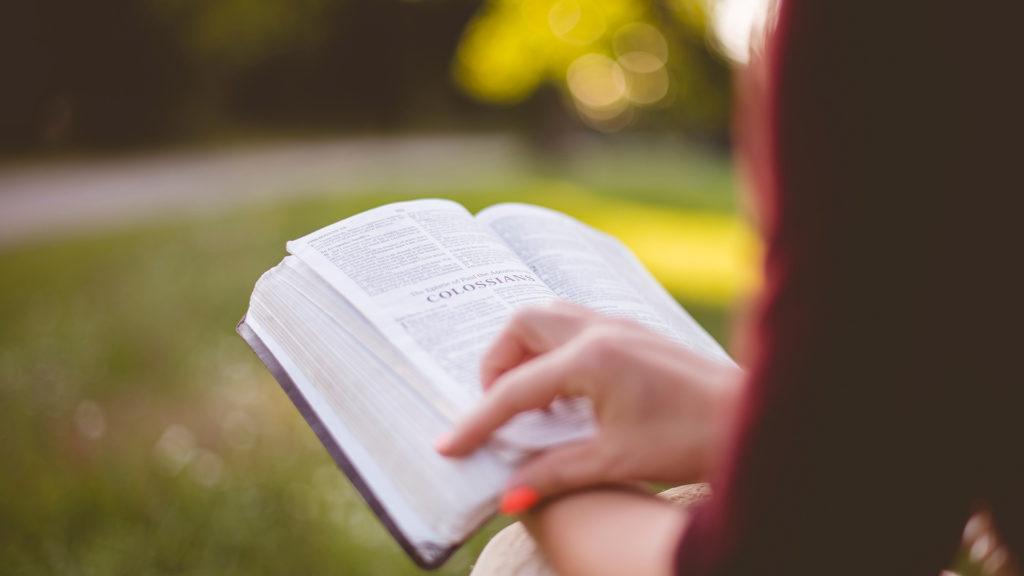 person-reading-Colossians